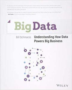 Big Data: Understanding How Data Powers Big Business DMKT 3303
