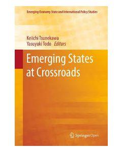 Emerging States at Crossroads ebook