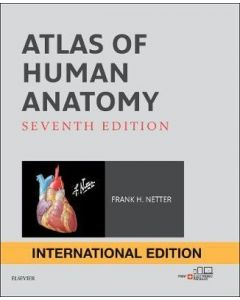 Atlas of Human Anatomy International