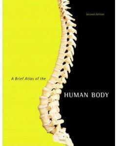 Brief Atlas Of The Human Body