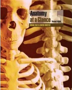 Anatomy At Aglance