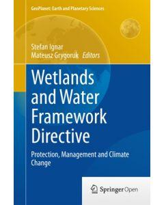 Wetlands and Water Framework Directive ebook