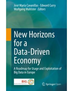 New Horizons for a Data-Driven Economy ebook